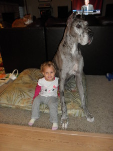 Johanna and our late Great Dane, Orion, in our O'Fallon, MO home. June 2015, and Fall 2014.